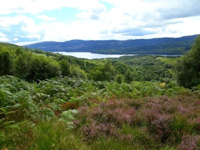 Walk in Trossachs National Park